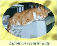 Elliott on security duty